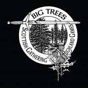 Big Trees Games Logo Art
